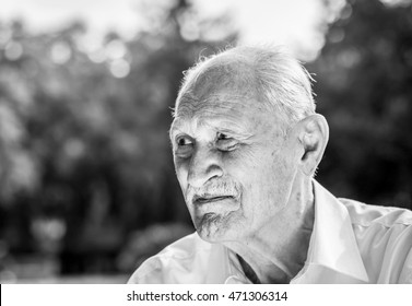 old man portrait in a park