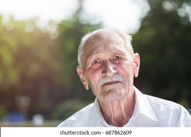 old man portrait, sitting on a bench in a park in summer