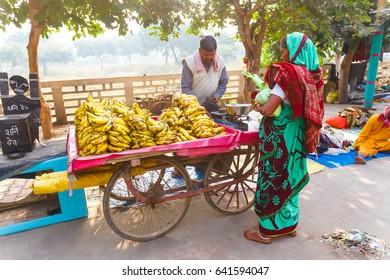Old man sells bananas on the streets of India.India, Govardhan, November 2016