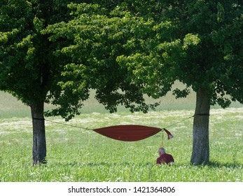 old man sitting in front of an hammock between trees