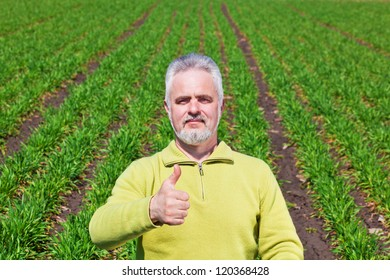 Old Man with thumb up on a grass