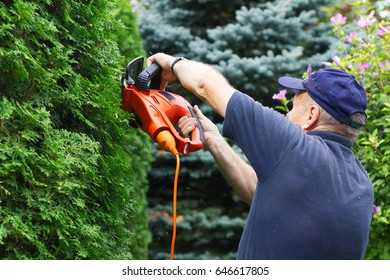 Old man trimming hedge with electric garden scissors, focus on hands.