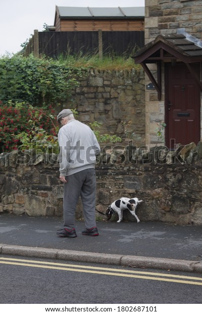 old man walking his jack russell dog