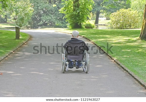 old man in a wheelchair in a park