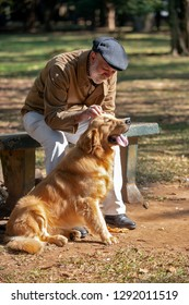 Old man with white beard and cap, sitting on park bench, stroking a Golden Retriever dog. Brazil