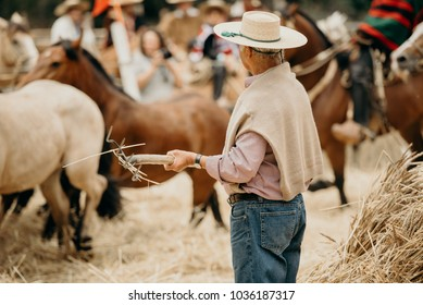 Old man working at farm with horses in a haystack