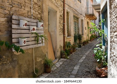 Old Mediterran street with plants