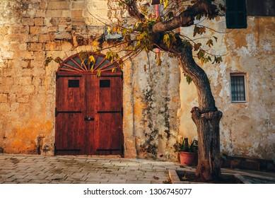 Old Mediterranean House, olive tree, wooden door