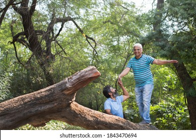 Old men climbing with senior man on a tree in a summer park