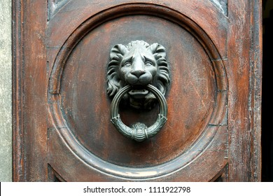 Old metal door handle in the form of a lion head. Door knocker closeup background. Florence, Italy