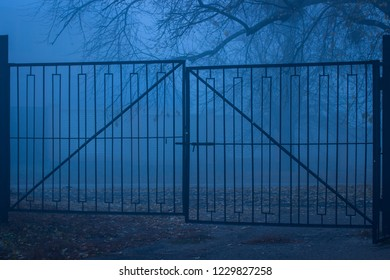 old metal gates and evening street covered with thick fog on the ground lies the fallen autumn foliage mysterious atmosphere of anyone around