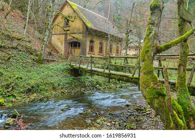 Old mill in the forest