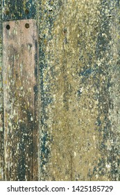 Old Moldy Wooden Wall Texture