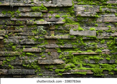 Old mossy brick wall texture - Shutterstock ID 338078366