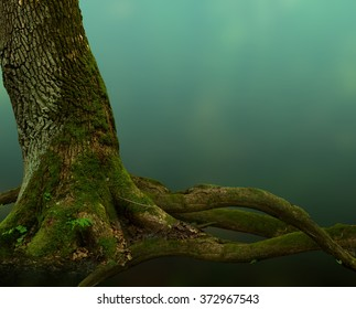 Old mossy tree with crooked roots on blue mysterious background