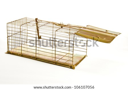 Old Mouse Trap Isolated on White