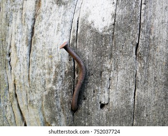 old nail on wood wall