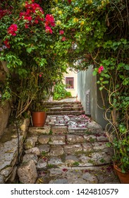 Old narrow street with ivy flowers in Plaka district, Athens, Greece. Plaka is one of the main tourist attractions of Athens. Scenic beautiful alley like overgrown tunnel in the Athens city center.