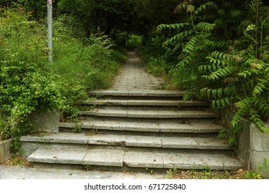 An old outdoor outdoor stone staircase. Stone, cement steps of old staircase with traces of weathering and destruction. Vintage stone staircase, ancient broken steps. Selective focus