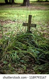 old overgrown Catholic cemetery