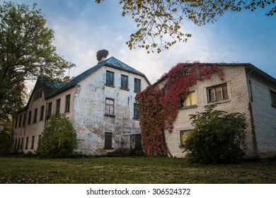Old overgrown house