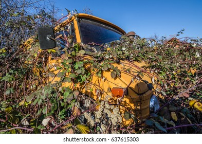old overgrown orange unimog