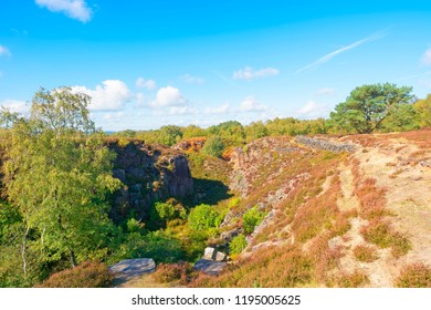 An old, overgrown, quarry on Stanton Moor in Derbyshire.