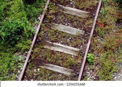 Old overgrown railway track