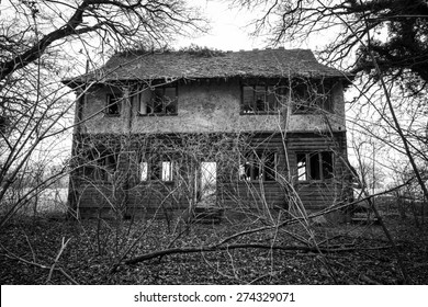 The old overgrown ruin of a house near Guist.