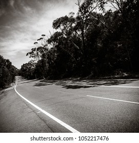 Old Pacific Highway, black and white