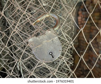 An old padlock is hanging from a barbed wire with cobwebs in an open state. Conception of the need to declassify all sorts of old secrets