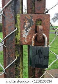 Old padlock on a chain mail fence