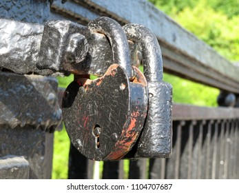 Old padlocks on the bridge in summer. Love padlock