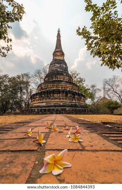 Old Pagoda at Wat Umong, Thailand