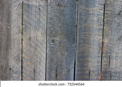 Old, painted boards look exciting on the fence.