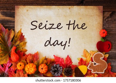 Old Paper With Autumn Decoration, Text Seize The Day