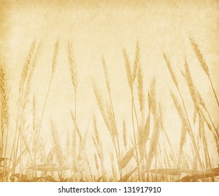 old paper with the image of ears of wheat