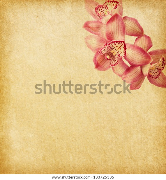 old paper textures with orchids.
