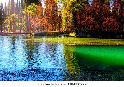 Old park, New Athos, Abkhazia. green pond water. Abandoned pond in the park, Gagra, Abkhazia