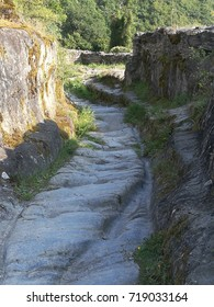 old path in a medieval castle