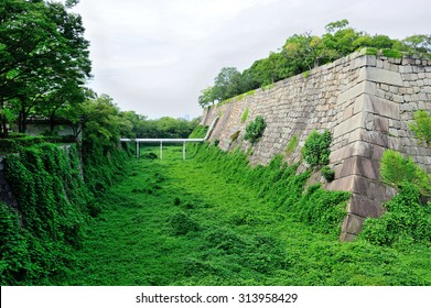 Old pattern stone wall covered by plants at Osaka castle, Osaka, Japan
