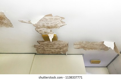 old peeling decay white gypsum board ceiling and lamp damage by water leaking from raindrop, moisture and dirty mold, bad living environment with disease and mildew, home renovation repairing concept