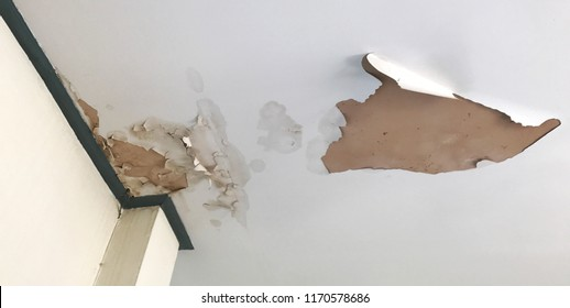 old peeling decay white gypsum board ceiling in house damage by water leaking from raindrop, moisture and dirty mold, bad living environment with disease and mildew, home renovation repairing concept