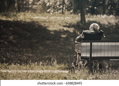 old person sitting at the park, sadness tone picture