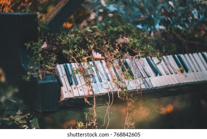 Old piano in leaves