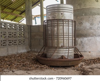 Old pig feeder in abandoned swine farm.