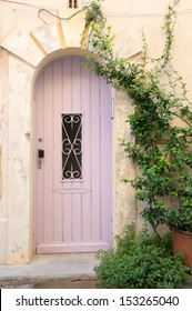 Old Pink wooden door with vines in Arles, France
