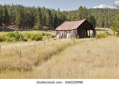 An old pioneer barn with a rusting metal roof in a grassy meadow on an Oregon ranch is gradually falling into disrepair.