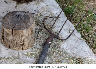 Old pitchfork and stump on a concrete path, as an attribute of rural life.