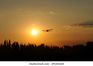 old plane at sunset/old plane at sunset